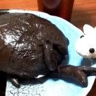 Rhinoceros Beetle Bread
